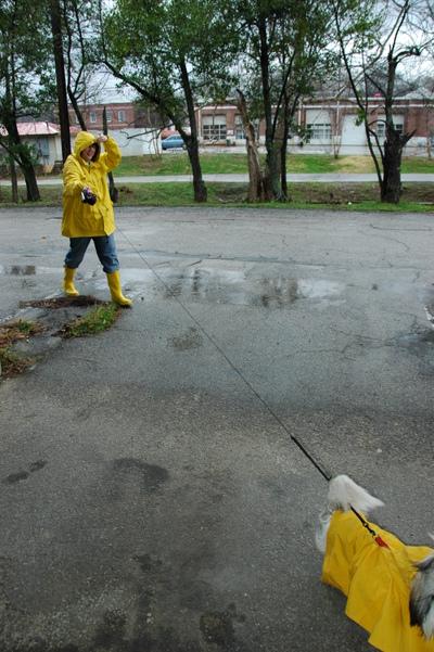 Rain_walk
